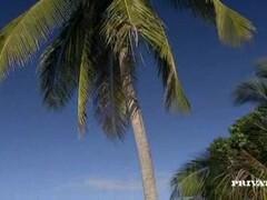 Naughty Amateur girls sunbathing & fucking on the beaches Thumb