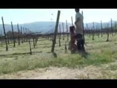 Silvina Luna Peteando y Cogiendo en el Campo de Uvas Thumb